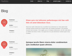 Radioos WordPress theme blog