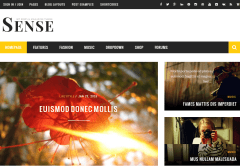 Sense- Front page of magazine site. 4+ home page layouts are possible with this theme