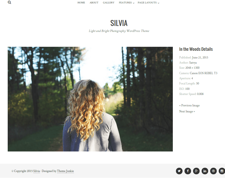 Silvia-WordPress-Theme