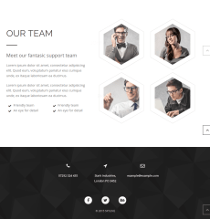 Skyline-WordPress-theme-team