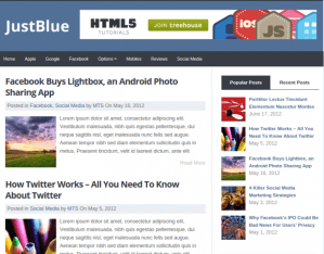 Social-media-category-wordpress-justblue