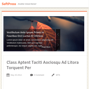 SoftPress Fully Responsive, Clean & Refined WordPress Theme