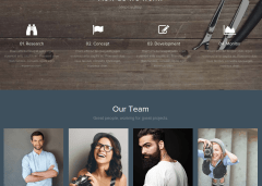 WordPress-theme-Team-Modules