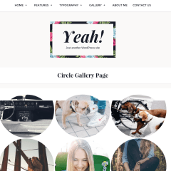 WordPress-yeah-theme-gallery-circle-layout