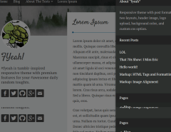 WordPress-yeah-theme-widget-area