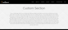 custom-section-onetone-theme
