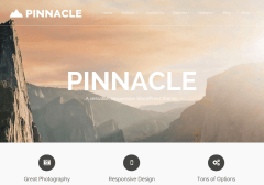 pinnacle-product-image