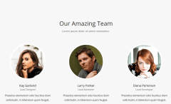 team novellite wordpress
