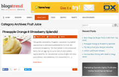 BlogsTrend Fruit Juice Page