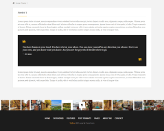 Feature (Footer design) of Wellow theme