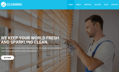 Home Page of Cleaning