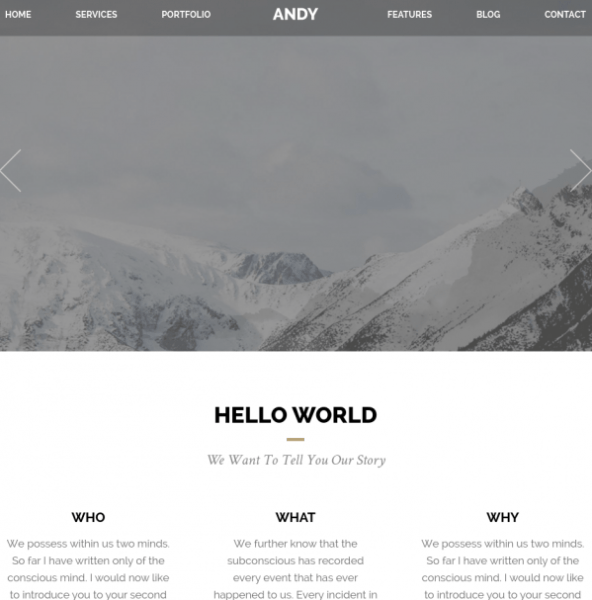 Homepage of Andy