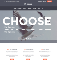 Homepage of Grace theme