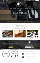 Homepage of Horse club theme