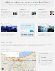 Homepage of WP-Blossom theme