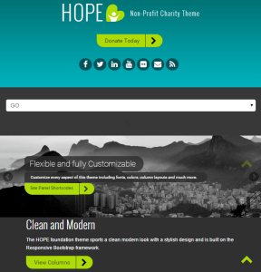 Hope - Responsive WordPress NonProfit theme