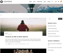 Blog page of Hosoren theme
