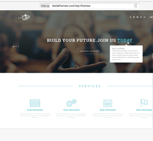 Levelup -WordPress theme for creating educational websites