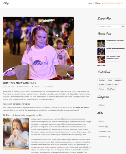 Right Sidebar blog Page - Peace