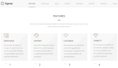 Sapona Features Page