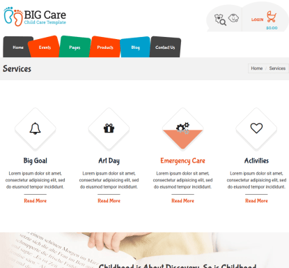 Services Page of BigCare