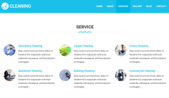 Services Page of Cleaning