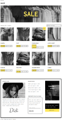 Shop page of Didi theme