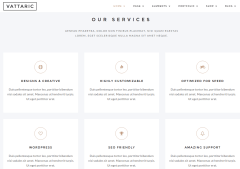 Vattaric Services Page