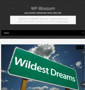 WP Blossom -Responsive Business WordPress theme