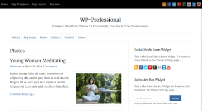 WP-Professional Photo Page