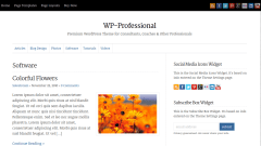 WP-Professional Software Page