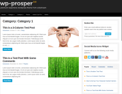 WP-Prosper Category 1 Page