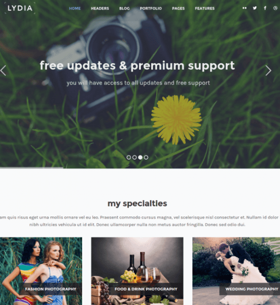 lydia-WordPress-theme