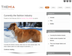 Blog Page of Themia