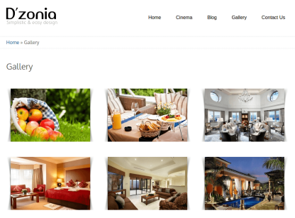 Gallery Page of Dzonia