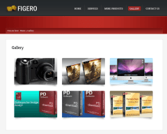 Gallery Page of Figero