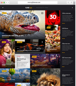 Grid 312 - Professional blog WP theme