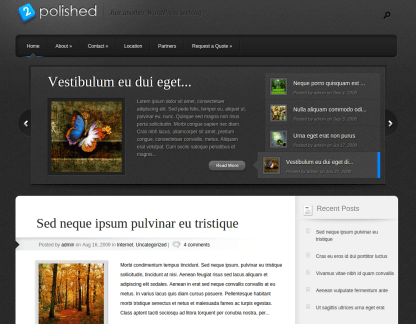 Home Page of Polished