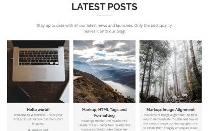 Latest Posts Section of Hit