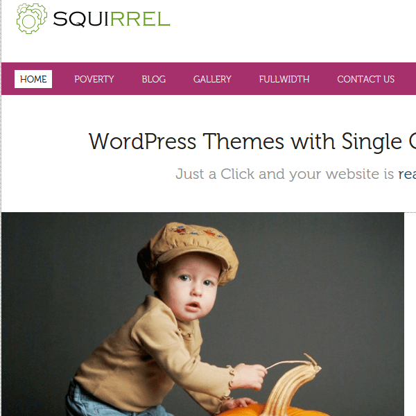 SQUIRREL – MULTIPURPOSE ENABLE WORDPRESS THEME