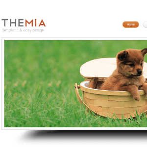 THEMIA UNIQUE AND SIMPLE WORDPRESS THEME