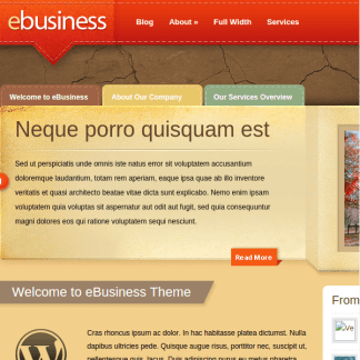 eBusiness WordPress Theme