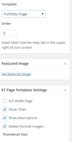 Portfolio Page - Template settings