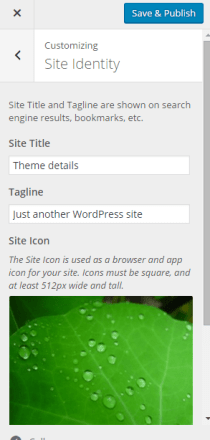 Adding Site Title and Icon