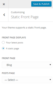 Theme Customizer - Static Front Page