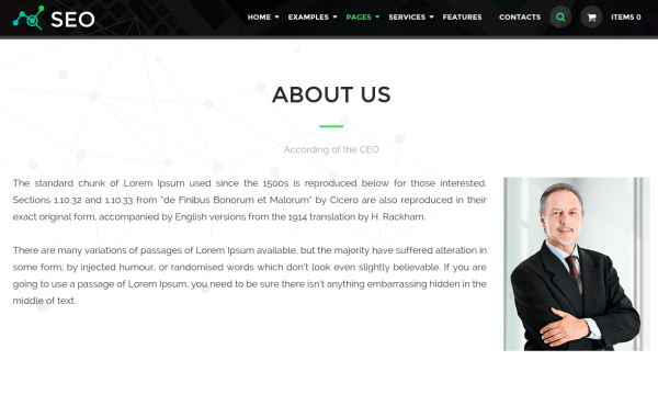 About Us Page of The SEO