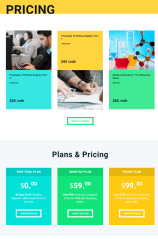 Online University – Pricing