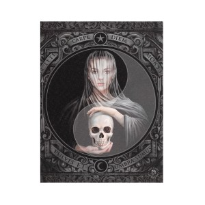 19x25cm Beyond the Veil Canvas Plaque by Anne Stokes