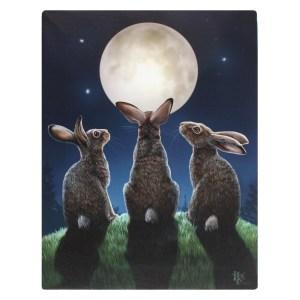 19x25cm Moon Shadows Canvas Plaque by Lisa Parker