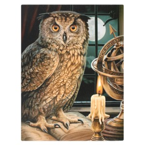 19x25cm The Astrologer Canvas Plaque by Lisa Parker